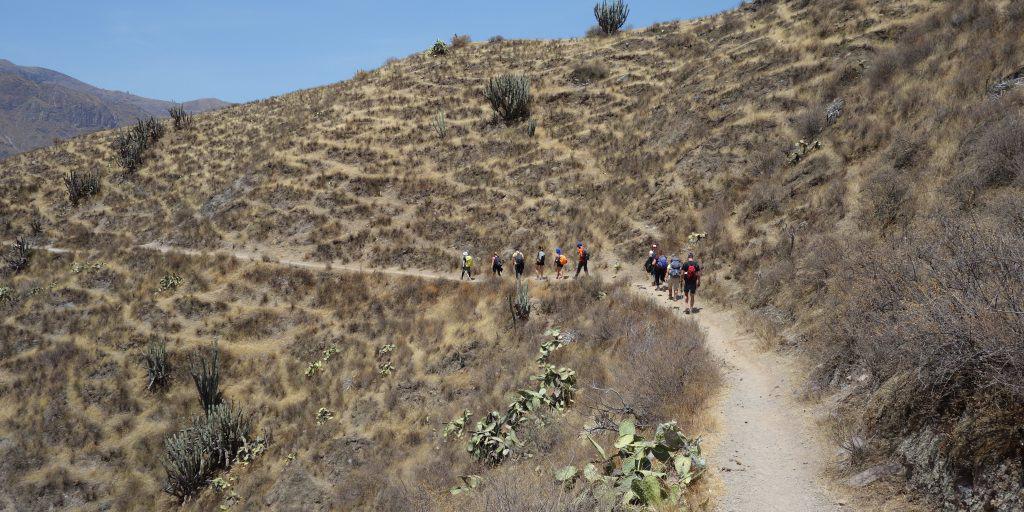 Colca Canyon hike in Peru