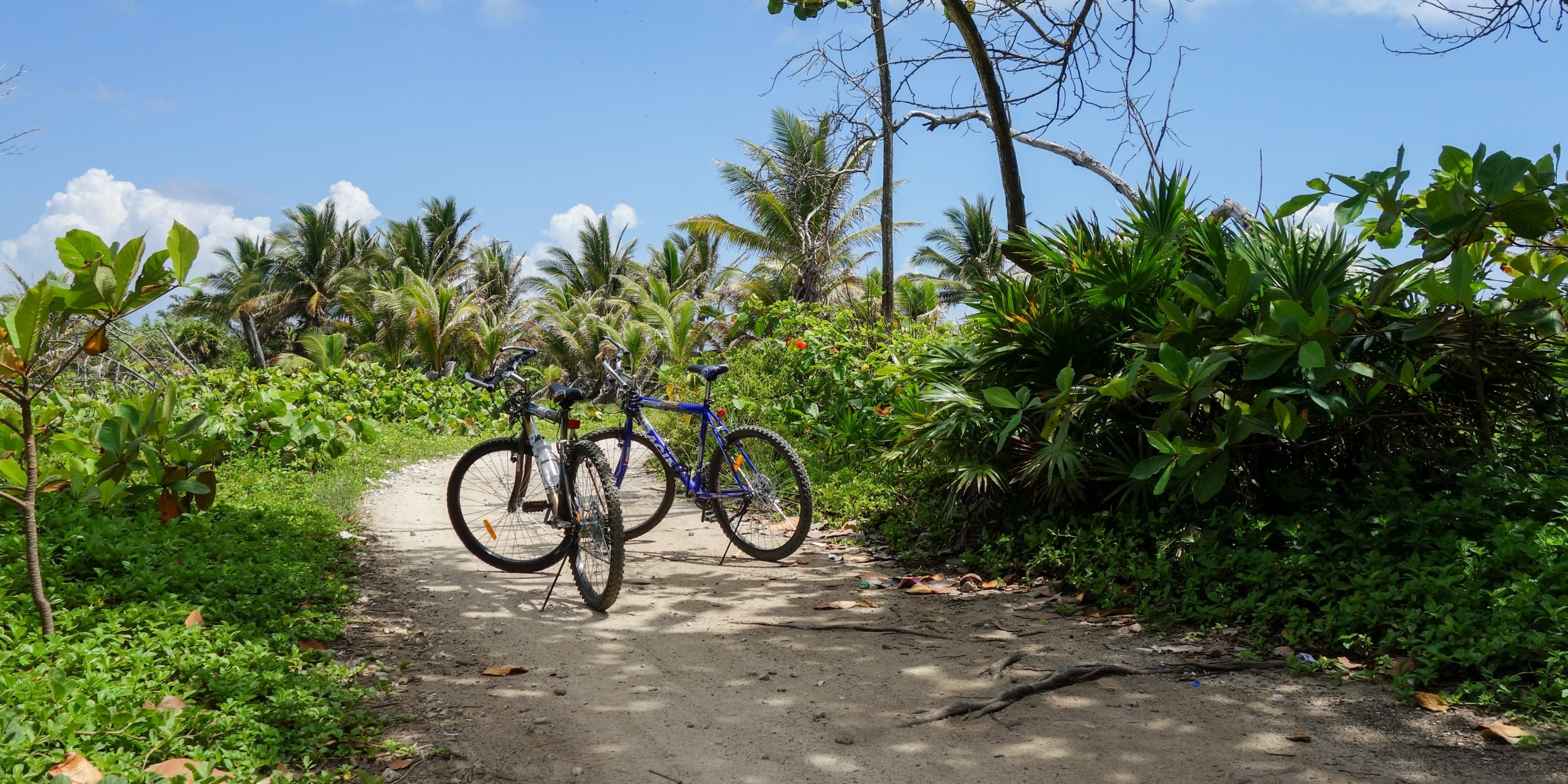 Two bikes in Utila, Honduras