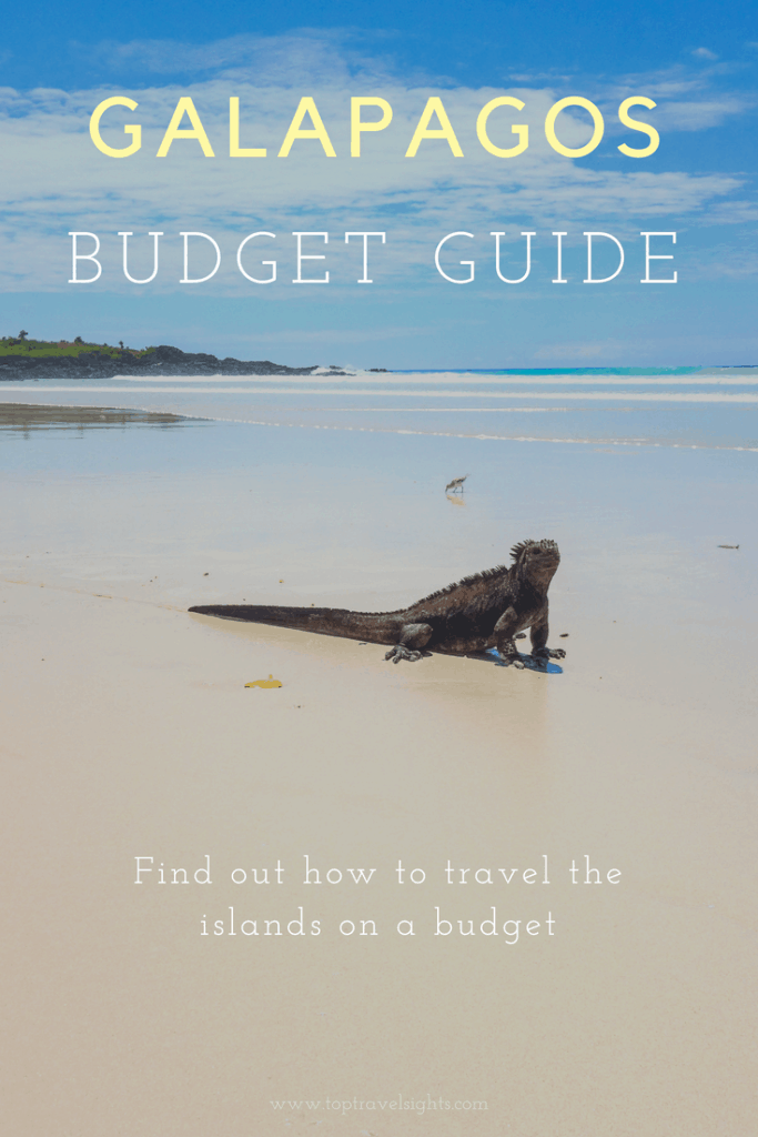 Pinterest Graphic for Budget Guide to Galapagos Islands, showing a marine iguana on a beach