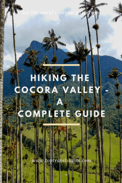 Pinterest image for guide to hiking the Cocora Valley, Colombia