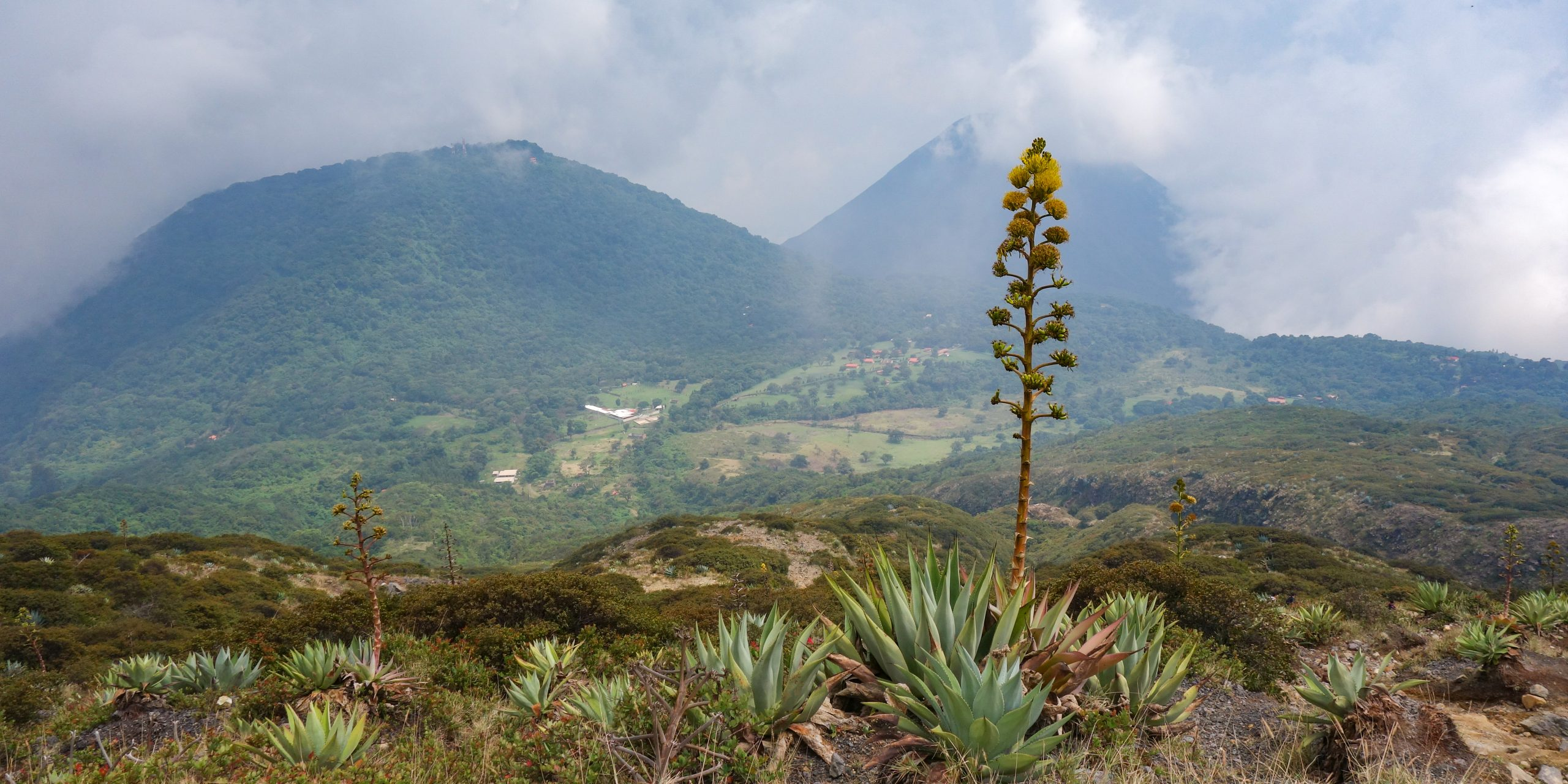 View from Volcan Santa Ana, El Salvador