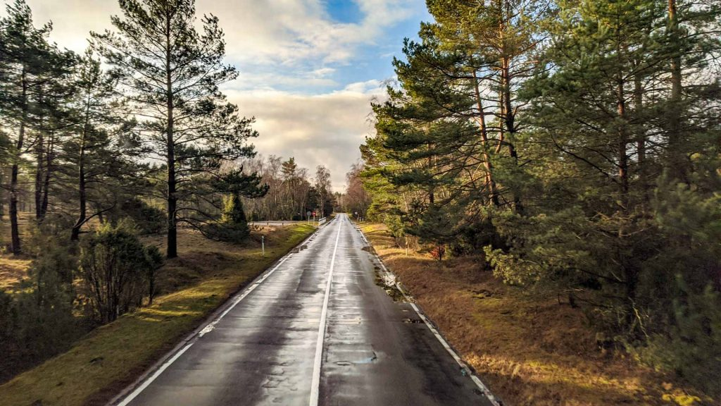 Road on the Curonian Spit