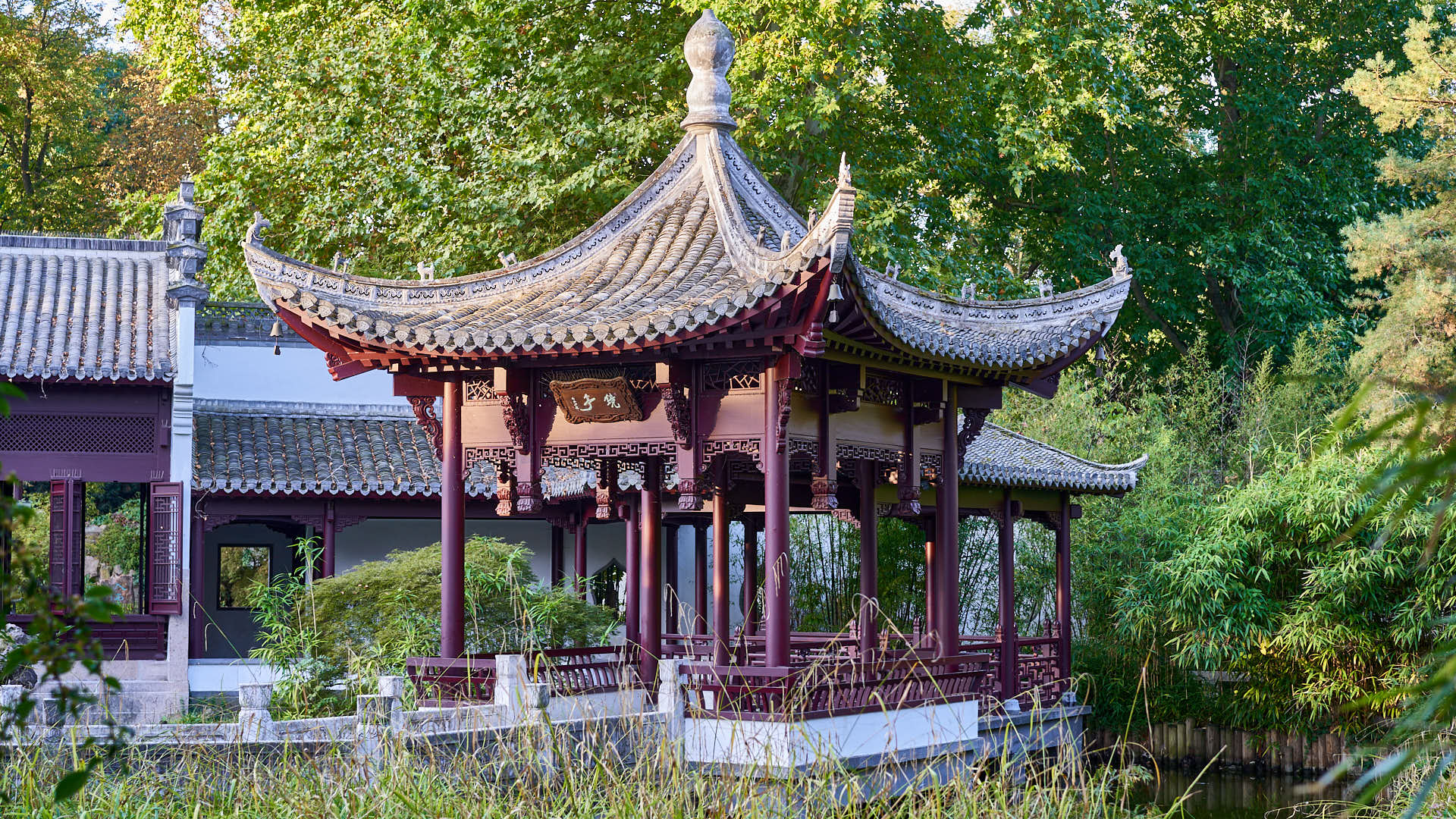 Chinese Garden in Frankfurt