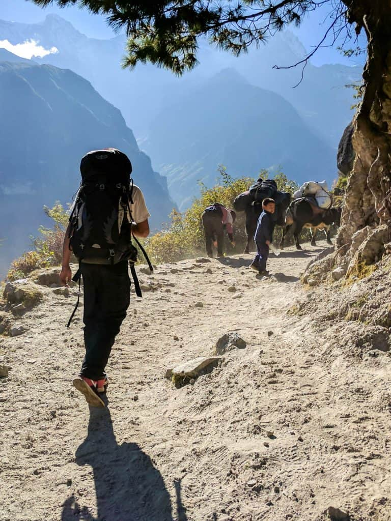 Sherpa walking through the trek