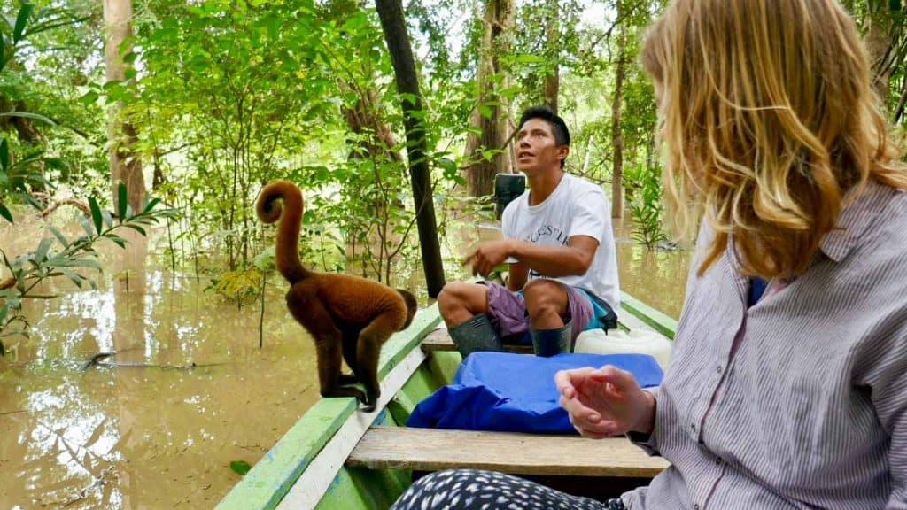 Feeding a monkey in the Amazon in Peru