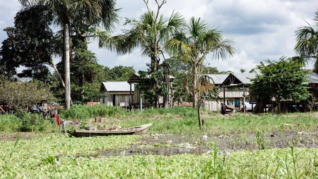 Houses in the Amazon in Peru
